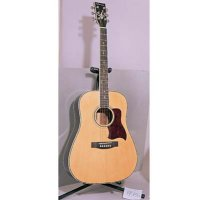 Classical & Acoustic Guitars
